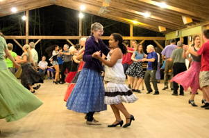 Folk Dance and Music Weekend and FolkDays